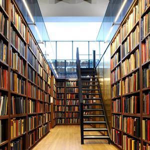 Библиотеки Визинги